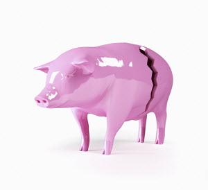 Broken, pink piggy bank
