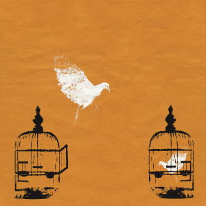 Dove escaping birdcage and bird trapped in birdcage