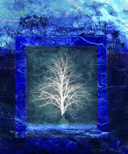 Tree in blue frame