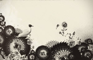 Bird and decorative flowers