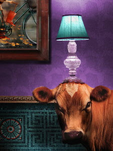 Cow in living room with lamp on head