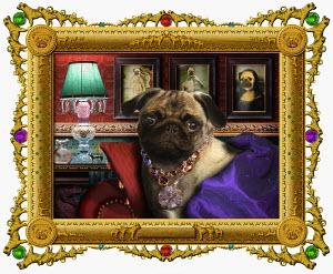 Ornate portrait of dog in glamorous clothing