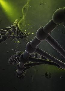 Green double helix