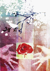 Collage of rose, bird, hands and tree