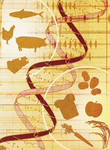 Collage of animals, food and DNA helix