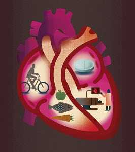 Cross section of heart contrasting heart disease and healthy lifestyle