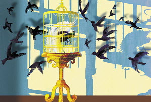 Birds flying towards bird in gilded cage