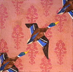 Ducks flying in formation against wall paper