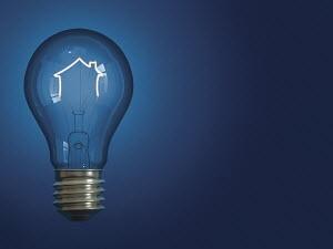 Light bulb shaped like house