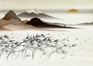 Asian landscape with mountain in background