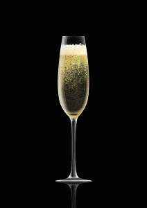 Single champagne flute on black background