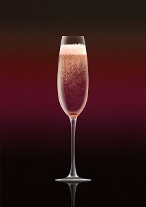 Single pink champagne in flute on pink background