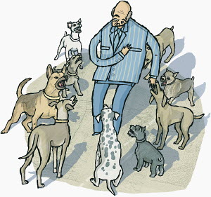 Businessman surrounded by threatening dogs