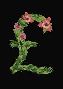 Blooming British pound symbol