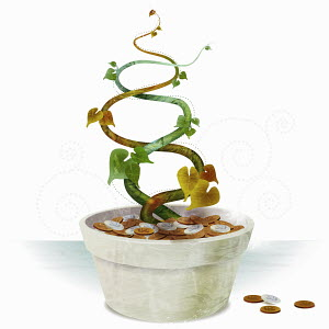 Alive and dead vines growing from pot of coins