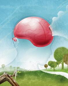 Air leaking from large hot-air balloon brain