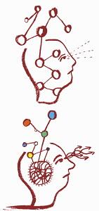 Molecules in men's heads