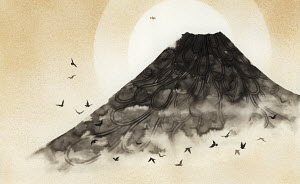 Birds flying over misty volcano mountain