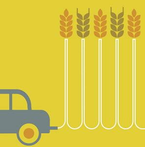 Car leaving trail of wheat stalks