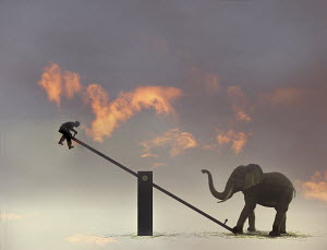 Man suspended in mid-air by elephant on seesaw