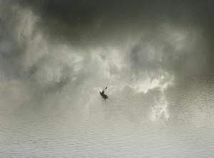 Man alone in kayak in fog - Man alone in kayak in fog