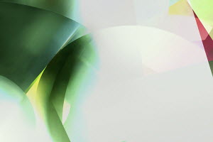Abstract green and white  backgrounds pattern