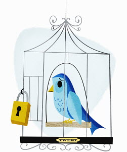 Padlock on birdcage with label tweet containing sad bird