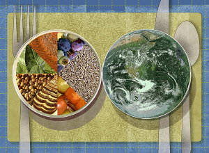 Place setting with healthy food pie chart plate next to globe plate