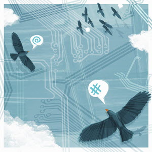 Birds flying over circuit board communicating in speech bubbles with computer symbols