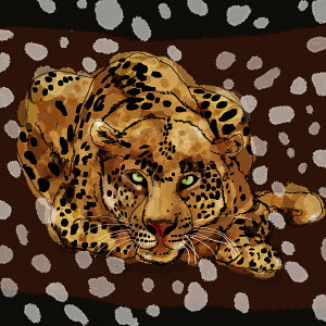Close up portrait of leopard on spotted background pattern