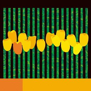 Abstract yellow tulip  flower arrangement  pattern
