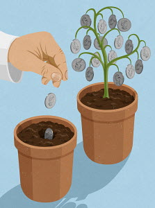 Hand planting Canadian dollar coins into plant pot next to money tree