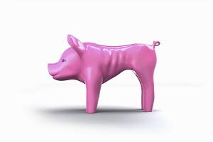 Skinny empty piggy bank