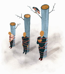 Businessmen tied to tree trunks in order of height