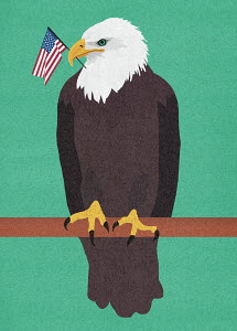 Perched bald eagle with American flag in beak