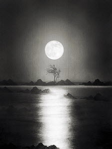 Atmospheric full moon reflecting on water with silhouetted tree and rocks - Atmospheric full moon reflecting on water with silhouetted tree and rocks