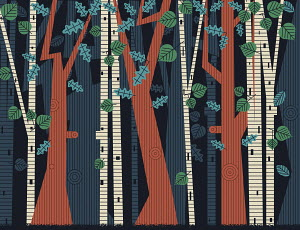 Backgrounds pattern of trees and leaves in forest