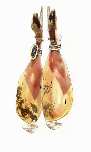 Dry-cured jamon ham hanging from string