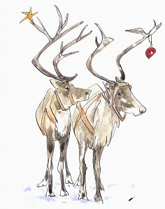 Pair of reindeer with Christmas decorations in antlers