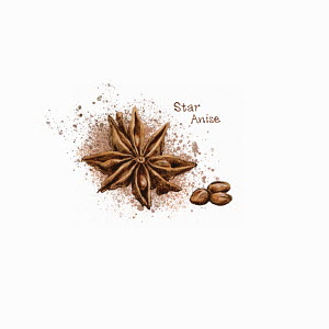 Star anise with seeds