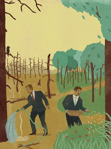Contrast between businessman fire fighting among dead trees and man sowing seeds in lush forest