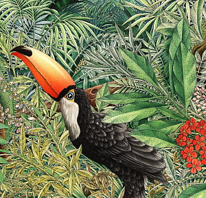 Toucan (Ramphastidae) in lush foliage
