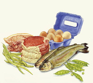 Food with protein, meat, fish, eggs and green beans
