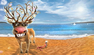 Happy reindeer and crab celebrating Christmas on sunny beach