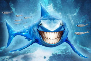 Shark swimming with toothy smile looking at camera