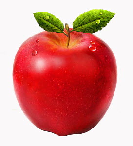 Close up of fresh juicy red apple