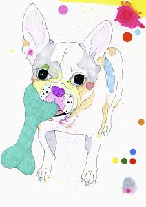 Painting of French Bulldog chewing bone