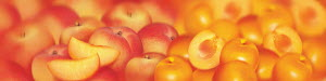 Close up of slices of fresh peaches and apricots