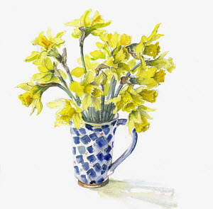Bunch of daffodils in mug
