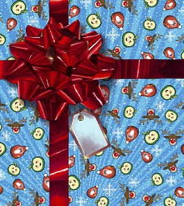 Christmas gift wrapped with ribbon and large red bow